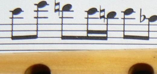 Transcriptions pour flûtes à bvec